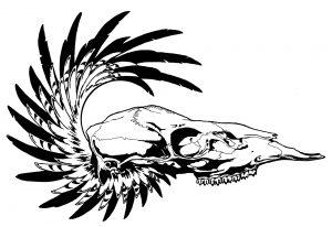 FD Skull